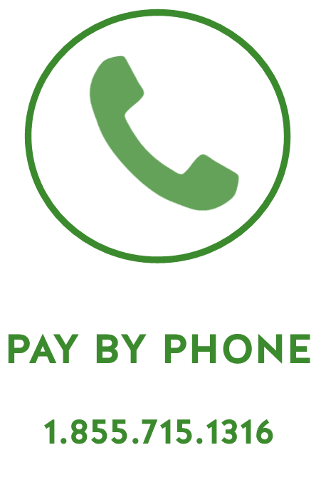 PAY BUY PHONE ICON