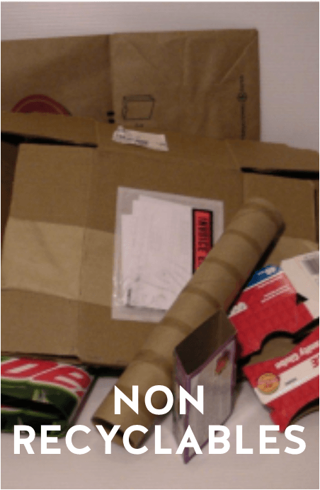 Non Recyclables