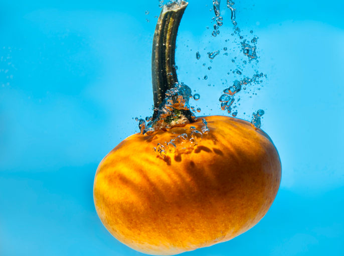 UNDERWATER PUMPKIN PATCH