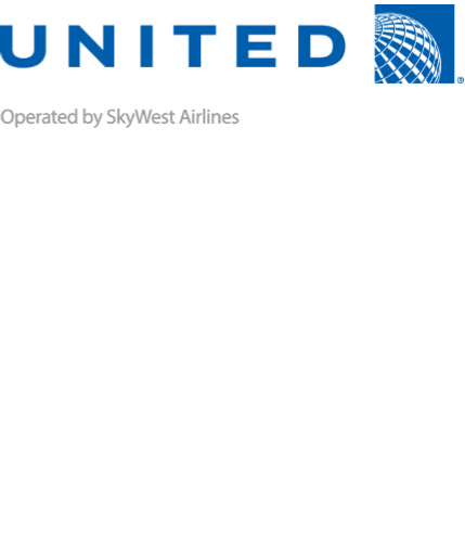 UNITED AIRLINES_TICKET LINK