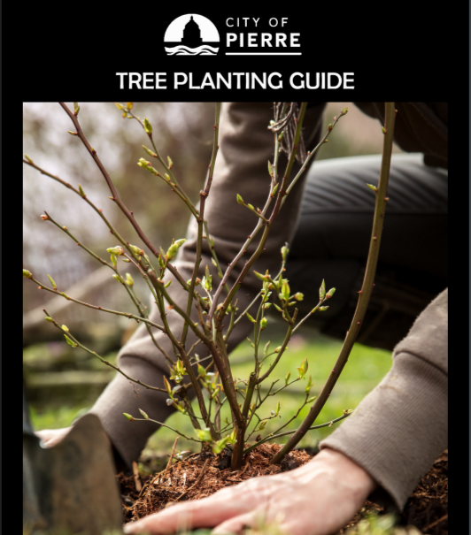 TREE PLANTING GUIDE_BOOK COVER