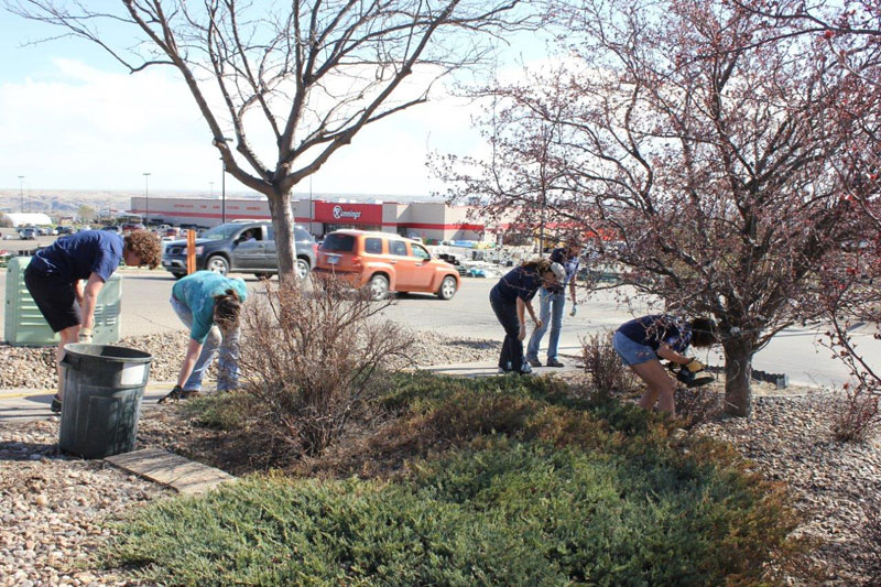 BankWest Employees Cleaning Up