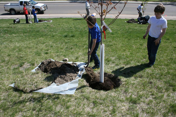 Planting Trees at the YMCA